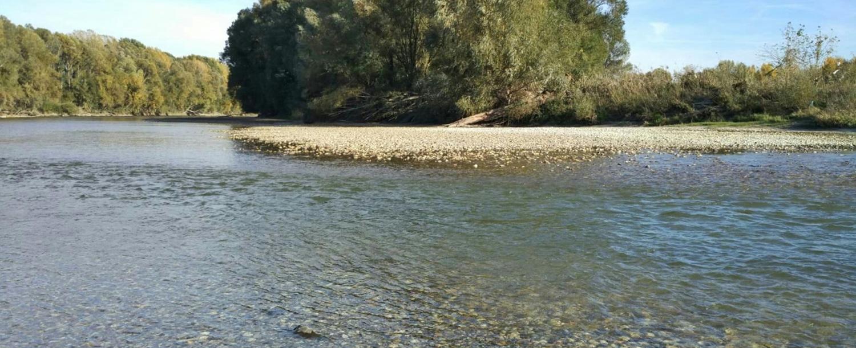 nížinná rieka - biotop jalca