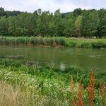 Dunaj č. 3 - OR Horná inundácia