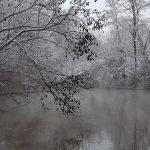 Fenolové jazierko v zime - príroda si vždy vie nájsť spôsob byť krásna